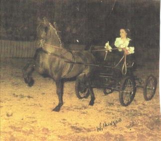 Wheatland's Humdinger